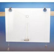 Stem-Model-Of-Dicotyledon-45x-Plastic (0)